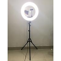 Đèn Led Livestream Size 45cm - 18INCH - 60W-80W