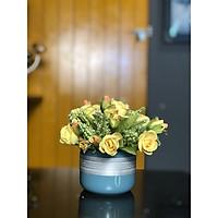 Bình hoa hồng mini- Vàng