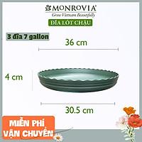 Combo 3 Đĩa lót chậu nhựa trồng cây MONROVIA 7 GL, chậu trồng cây, chậu cây cảnh mini, để bàn, treo ban công, treo tường, cao cấp, chính hãng thương hiệu MONROVIA