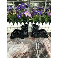 Cặp Tỳ Hưu phong thủy đá thạch anh đen - Dài 13 cm