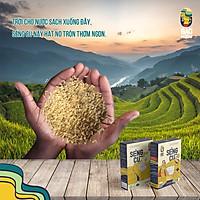 Combo 5kg gạo lứt Séng Cù, đóng gói hút chân không, đặc sản Tây Bắc