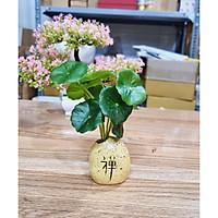 Chậu cây mini (chọn mẫu) kèm nhành lá sen giả trang trí