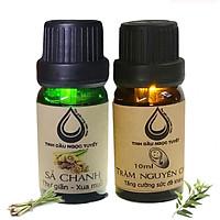 Bộ tinh dầu xua đuổi côn trùng, đem lại sự bình yên cho gia đình bạn 10mlx2 (Sả chanh, tràm) Ngọc Tuyết