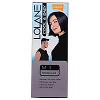 Thuốc Nhuộm Tóc Lolane M1 - Đen
