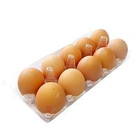 [Chỉ giao HCM] - Hộp trứng 10 quả - Trứng sạch đã kiểm dịch