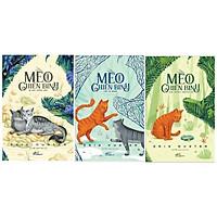Combo Mèo Chiến Binh - Bí Mật Rừng Sâu + Lửa Và Băng + Vào Trong Hoang Dã