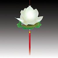 Lồng Đèn Hoa Sen - Quốc Hoa