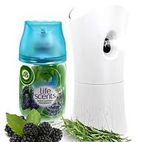 Bộ phun tinh dầu tự động Air Wick Forest Water 250ml QT07388 - hoa hương thảo