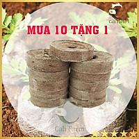 Combo 10 Viên Nén Xơ Dừa - Viên Ươm Hạt