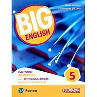 Big English 2ed PTE YL WB5 VN