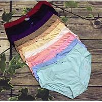 Combo 10 quần lót nữ BIG SIZE Thun cotton  Cạp cao Hàng Việt Nam(Từ 60kg đến 90kg) - Size XXL :T ừ 70kg đến 80kg