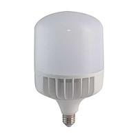 Bóng đèn led bulb trụ 80W Rạng Đông, model LED TR140/80w