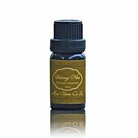 Tinh dầu Hương nhu nguyên chất 10ml - Hoa Thơm Cỏ Lạ