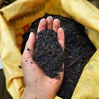 Bịch 5kg đất sạch đã qua xử lý thích hợp trồng rau, cây cảnh rất tiện lợi