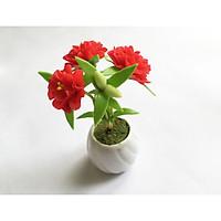 Chậu hoa đất sét mini - Hoa mười giờ đỏ