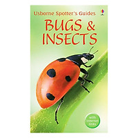 Usborne Bugs and Insects