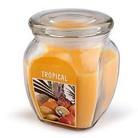 Hũ nến thơm Bolsius Tropical BOL7926 540g (Hương hoa quả)