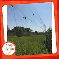Lưới Bẫy Chim Chào Mào, Họa Mi, Sẻ, Khuyên Cao 5m, Độ Dài Từ 35m-60m, Lưới Chim Thái Lan