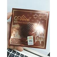 Dây Đàn Guitar Acoustic Alice AWR47-SL