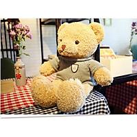 Gấu bông gấu lông xù mặc áo len cao cấp