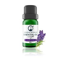 Tinh dầu cao cấp Lavender PK 10ml