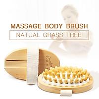 Bàn Chải Massage Cơ Thể Và Làm Giảm Cellulite