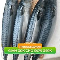 Cá Sapa Nhật DTP 1kg