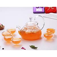 Bộ ấm chén pha trà thủy tinh chịu nhiệt cao cấp Zeno SET03