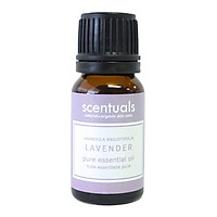 Tinh dầu oải hương - Pure essential oil 10 ml - LAVENDER