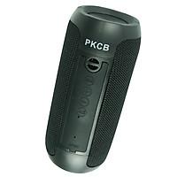Loa nghe nhạc Hỗ Trợ Kết Nối Bluetooth 5.0, Thẻ Nhớ Loa di động - PKCB - Hàng Chính Hãng