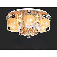 Đèn mâm LED ốp trần VKT-NC-6205A