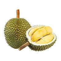 [Chỉ giao HCM] - Sầu riêng giống Thái/ 6 Ri (1kg)