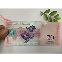 Tiền 20 Venezuela hình con rùa , tặng phơi nylon bảo quản tiền