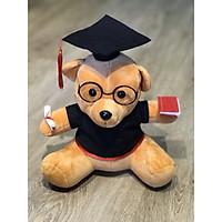 Gấu bông tốt nghiệp màu nâu lông mịn size 30cm