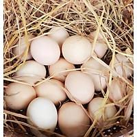 [Chỉ Giao HN] Trứng gà ta - 10 quả