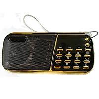Máy nghe nhạc thẻ nhớ. USB, đài FM CR-853