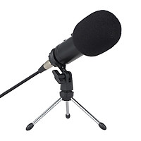 Professional Condenser Microphone Studio Sound Microphone Recording Broadcasting Sound Card Earphone Port with