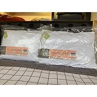 Combo 2 ruột gối dày Everon kích thước 45x65cm