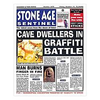 Usborne Newspaper Histories: Stone Age Sentinel