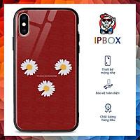 Ốp Lưng Iphone Xs Max In Hình Hoa Cúc IPBOX Cho Iphone 12/11 ProMax/Xs/Max/Xr/X/6/6S/7/8Plus