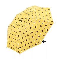 Ô dù đi mưa gấp gọn hình gấu Brown