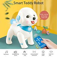 K19 RC Robot Teddy Puppy Robotic Dog Voice Control Program Sing Shake Head Interactive Pet Dog Toy for Boys Girls