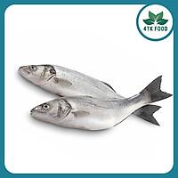 [Chỉ Giao HCM] 1KG Cá Chẽm Nguyên Con 4TK Food, Hải Sản Tươi, Không Chất Bảo Quản, Nhập Trực Tiếp Từ Miền Trung