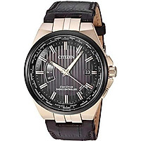 Citizen Watches CB0166-54H Eco-Drive Two-Tone One Size