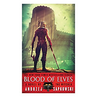 The Witcher  4: Blood Of Elves