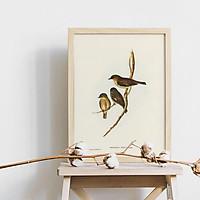 Tranh canvas treo tường gia đình nhà sẻ xám - Dusky Robin - phong cách vintage (cổ điển) - B029