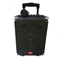 Loa kéo hát Karaoke di động Vỏ gỗ Tcare Z8 Kèm 01 Micro - Hàng chính Hãng