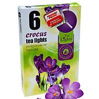 Hộp 6 nến thơm tinh dầu Tealight Admit Crocus QT026104 - hoa nghệ tây