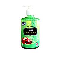 Nước rửa tay thảo mộc Premium Hand Soap Mr Fresh 500ml - an toàn cho da tay