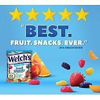 Thực phẩm bổ sung Kẹo dẻo trái cây hỗn hợp - Welch's Mixed Fruit Snack (2 KG - 90 gói)